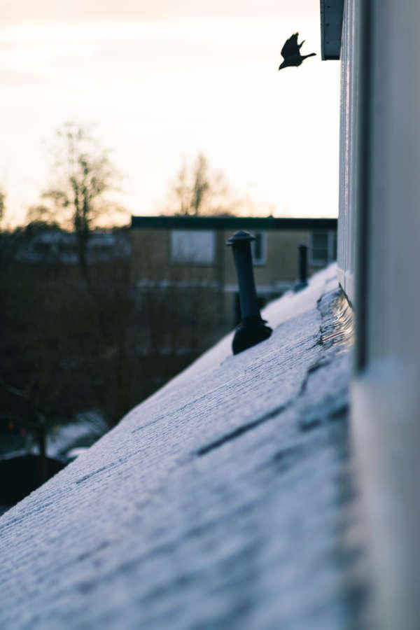 Dak-in-de-sneeuw